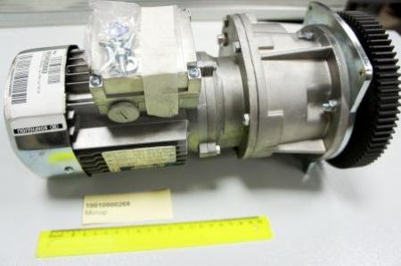 10010000268 Мотор
